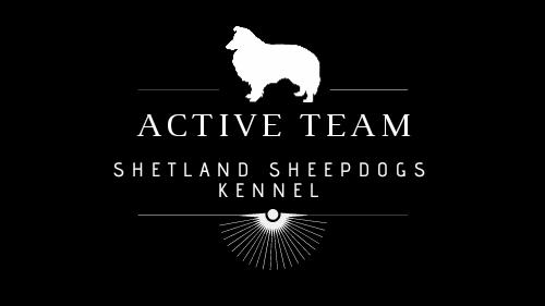 Active Team